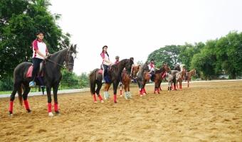 horse riding club pic3